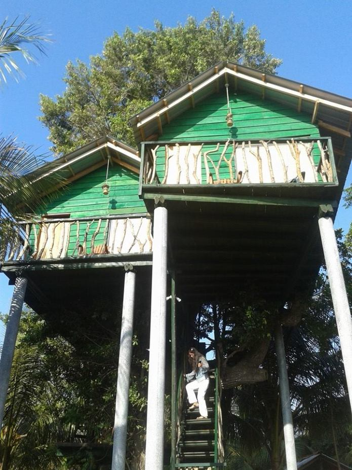 The tree houses