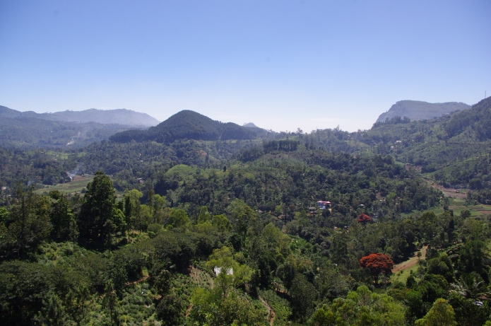 Views from the homestay in Ella